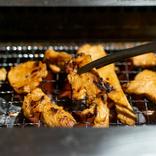 代替肉の焼肉はアリなのか? 偽物の肉オンリーでソロ焼肉をキメてみた / 味、満足感、コスパ面を本物の肉と比較