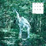 majiko、アルバム『世界一幸せなひとりぼっち』のビジュアル&店舗特典情報を解禁