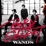【先ヨミ】WANDSの21年ぶりアルバム『BURN THE SECRET』が11,591枚で首位走行中