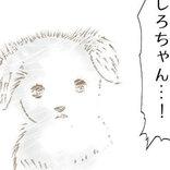 「お母さんに会いたい」 手離した子犬の運命に、涙がとまらない