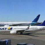日本版顧客満足度指数、スカイマークが初のトップ 国内長距離交通部門で