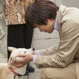 北村匠海、小松菜奈、吉沢亮ら、愛犬とのキスショットも 『さくら』メイキングカット公開