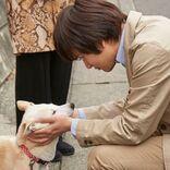 北村匠海・小松菜奈・吉沢亮ら、愛犬サクラが一番好きなのは…