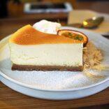 チーズケーキ好き必見!全国のチーズケーキを集めたガイド本