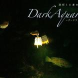 新江ノ島水族館で夜の生態観察、グルメや夜景も楽しめる夜間イベント『DarkAquarium-ダークアクアリウム―』開催決定