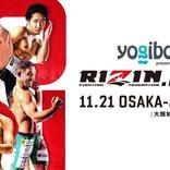 11・21 RIZIN大阪城ホール初開催 朝倉vs斎藤のフェザー級王者決定戦