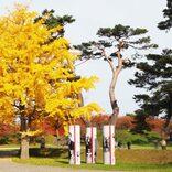 函館・五稜郭公園は歴史も楽しめる散策スポット 開放感抜群の景色が最高