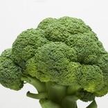 たっぷり食べて痩せられる!? ブロッコリーを食べよう