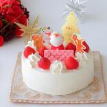 無料でもらえる♪ 豪華「手作りクリスマスケーキ無料キット」