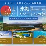 HISと星野リゾート、JAL国際線機材チャーター便利用の八重山ツアー販売 機内食も提供