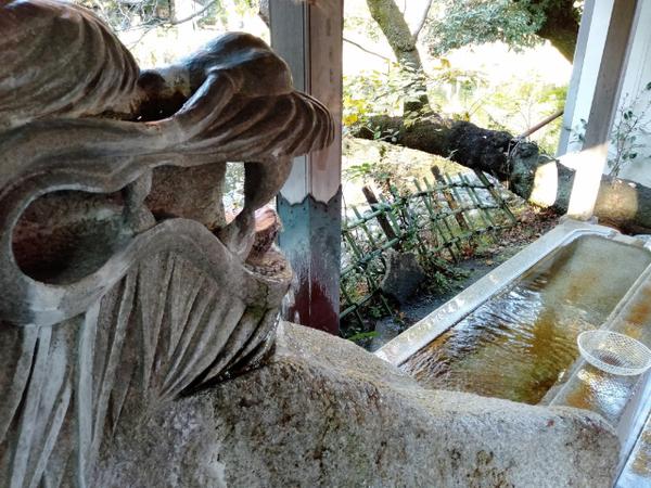 吉祥寺井の頭公園3