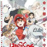 ClariS、TVアニメ『はたらく細胞』第2期エンディングテーマ担当