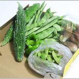 メルカリで新鮮な野菜を取り寄せるという選択肢