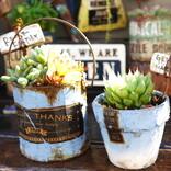 おしゃれなダイソーのガーデニンググッズ特集!お庭のデザイン性をあげる商品をご紹介