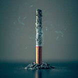 2019~2024年、世界の紙巻たばこ市場は成長 - ブルガリアなどで喫煙率上昇