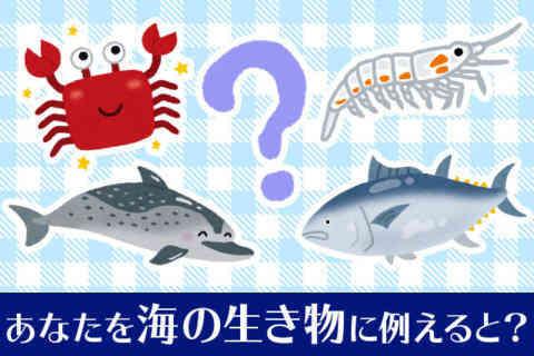 心理テスト|あなたを海の生き物に例えると?あなたのチャームポイントが分かる生き物診断