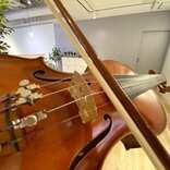 【大人のおけいこ】生まれて初めてヴァイオリン、ジブリが弾きたい奮闘記<2>オンラインレッスンしてみた