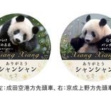 京成電鉄、中国に帰るパンダ「シャンシャン」惜別企画 記念HMも掲出