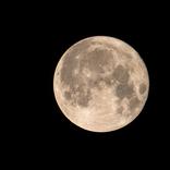 """「月が綺麗ですね」「あんたはここでふゆと死ぬのよ」… 人の心を動かしてきた""""言ってないセリフ""""たち"""