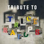 TRICERATOPS トリビュート盤の参加アーティスト第二弾としてKAN、スキマスイッチら4組を発表
