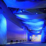 新江ノ島水族館、冬季スペシャルイベント「Jewerium」開催!江の島一帯にロマンチックな景色広がる