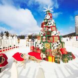 星野リゾートのクリスマス2020!ファーム・ビーチ・ワイン・ラーメン・・・どれがお好み?