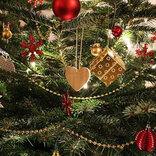 山本彩、クリスマスツリーとの自撮りに「きゃわいい!」