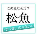 【魚漢字】「マツギョ」ではありません!「松魚」は何と読む?
