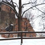 アニメの雪は美しい。鬼滅の刃、NARUTO……雪の演出がすばらしすぎる4作品