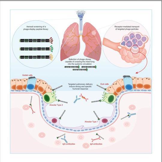 201230vaccine2