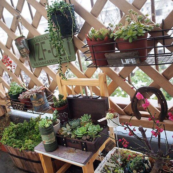 雑貨や植物をラティスに配置した庭の目隠し