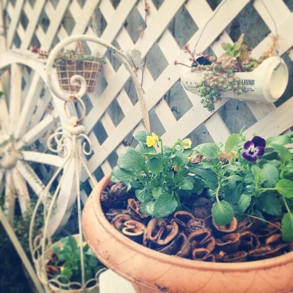 白いアイテムをラティスに配置した庭の目隠し
