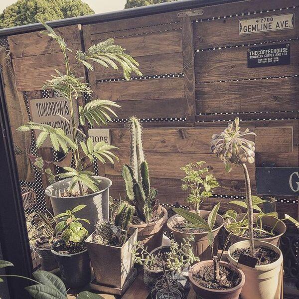 賃貸ベランダを簡単に変える庭の目隠し