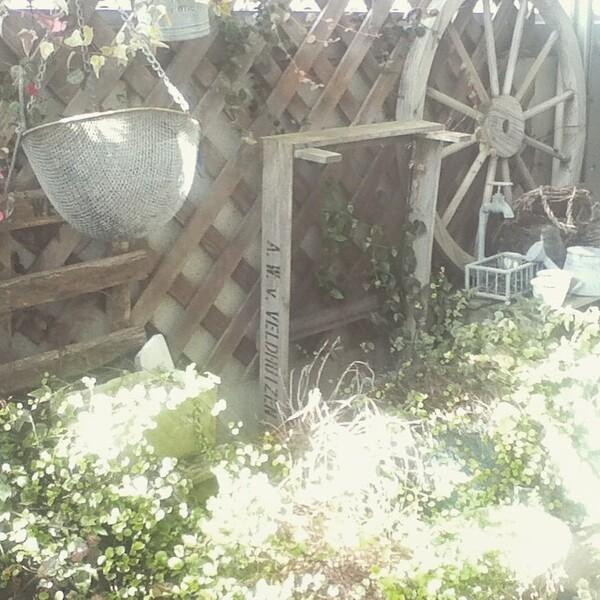 元の壁面より高いフェンスで庭の目隠し