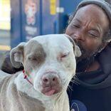 火災が起きた動物保護施設で犬猫を救出した男性 その後、人生が変わる展開に