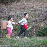 花江夏樹 ナレーションで『はじめてのおつかい』初参戦、全集中で兄妹愛を応援