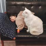 ソファで寝落ちしてしまった女の子 すると、猫が…?