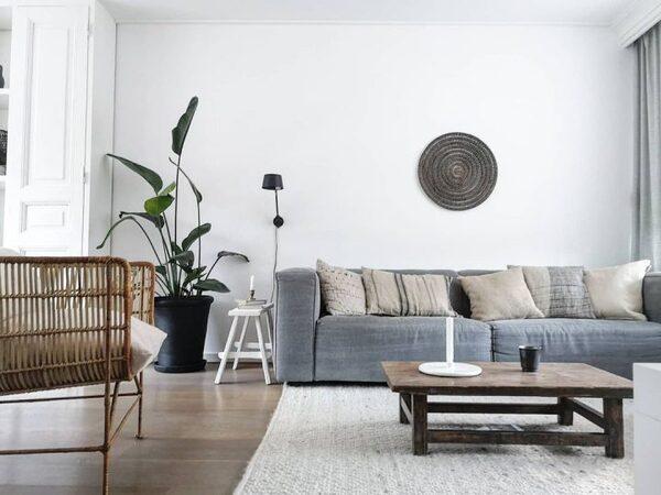 天然素材の家具とグリーンが好相性