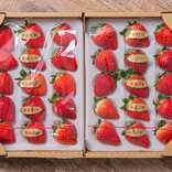 おこもりライフにいちごはいかが?「お家で10種のいちご食べ比べセット」 | News