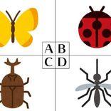 心理テスト|生まれ変わりたい虫でわかる!あなたの仕事能力