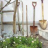 長方形の花壇をデザインして素敵なお庭づくり♪初心者にもおすすめなおしゃれ実例