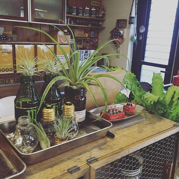 デザイン豊かな空き瓶を並べて花瓶にリメイク