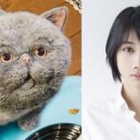 松本穂香、『おじさまと猫』ふくまるとそっくりな猫・マリンの声を担当