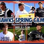 球春到来! ステイホームのプロ野球「キャンプ」観戦マニュアル 【基本編】