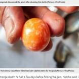 """貧しい生活を送る男性""""不思議な夢""""で超希少な天然真珠を発見 3千万円以上で買い取りオファーも(タイ)"""