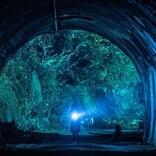 『樹海村』公開記念! 今夜『犬鳴村』を地上波放送 最凶心霊スポットを映画化