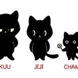 【バレンタイン! 黒猫心理テスト】「あなたの恋愛パワー」が簡単にわかる!