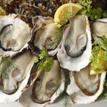 必見【牡蠣の食べ放題】!! 生牡蠣・カキフライも好きなだけ、ランチもOK終日開催♪