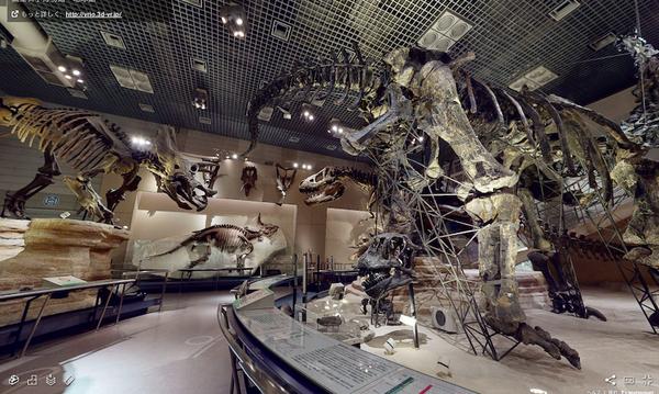 国立科学博物館(地球館地下1階) (ホームページより引用)