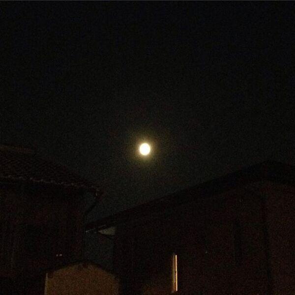 春の夜にぼんやり見える月を表した言葉「朧月」